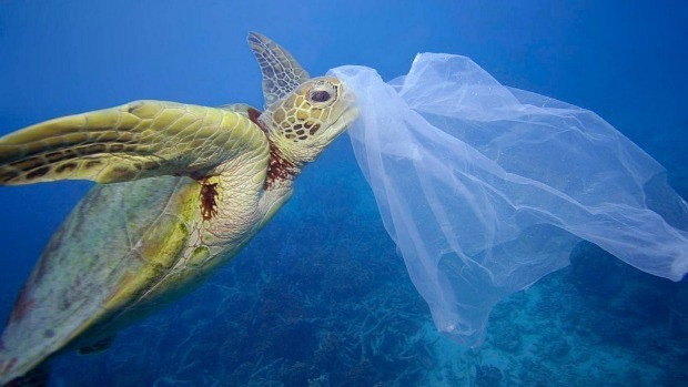 Cut a plastic, save a life.